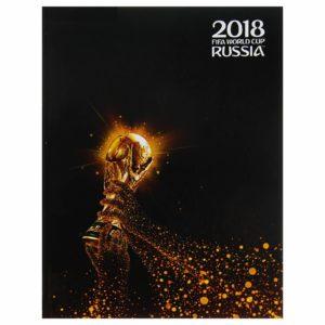 Тетрадь А5, 120 листов на кольцах «ЧМ по футболу 2018. Золотой кубок», твёрдая обложка